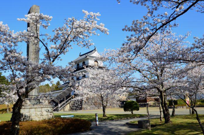 春の白石城の画像