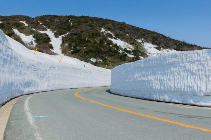 蔵王エコーラインの雪の回廊の画像