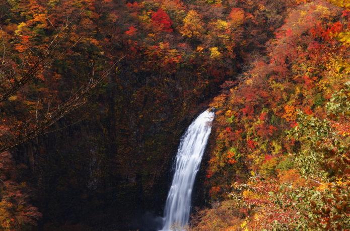 蔵王の紅葉の不動の滝の画像