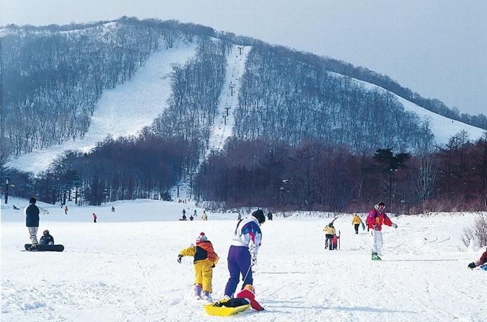 白石スキー場のファミリーコース