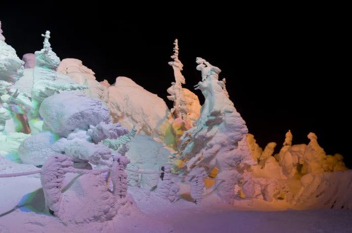 ライトアップされた樹氷
