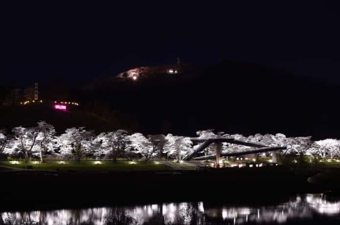 一目千本桜の夜桜