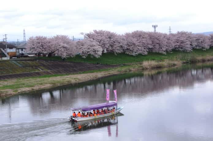 お花見屋形船