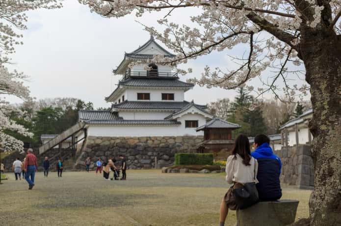 益岡公園桜まつり