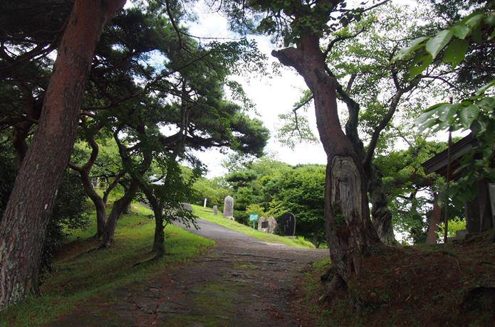新富山 山道