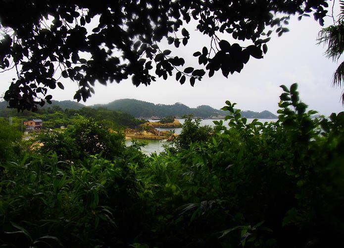 稲ヶ﨑公園の階段からみる景色