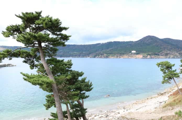 金華山から望むコバルトブルーの海