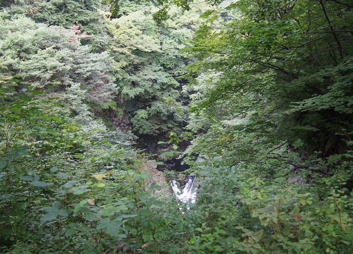 葉に隠れて見えない鳳鳴四十八滝