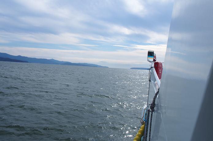 田代島に向かう船