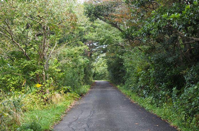 田代島 道