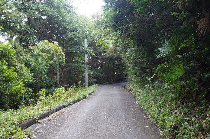 田代島 道路