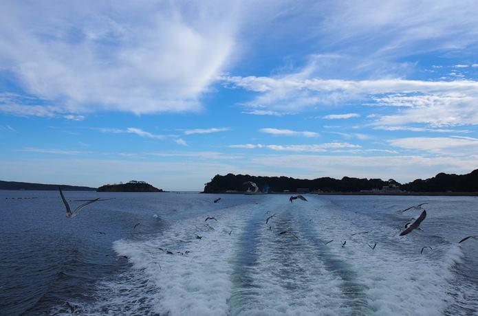 田代島とカモメ