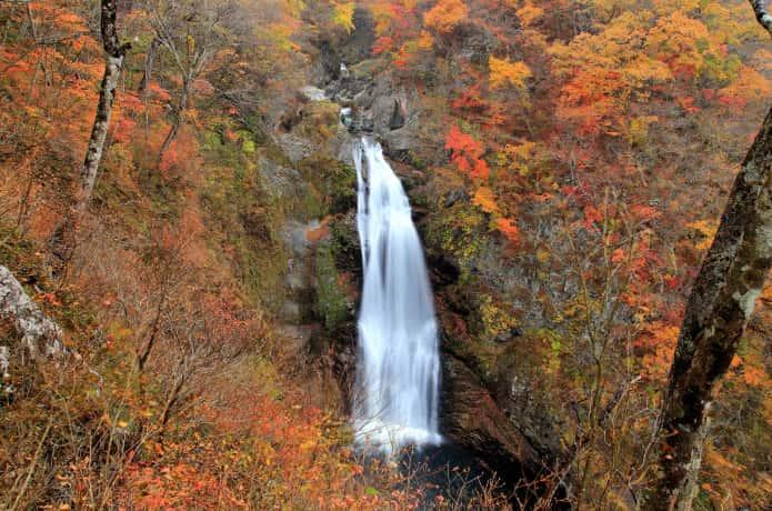 秋保大滝 紅葉