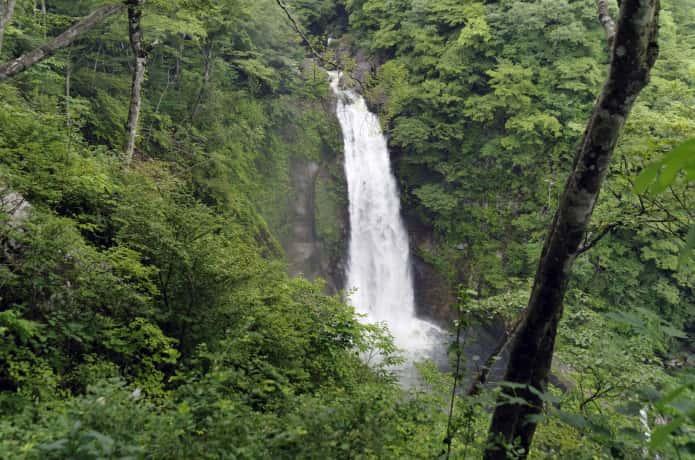 滝見台からみる秋保大滝