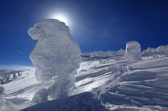 蔵王 樹氷