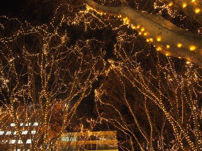 仙台光のページェント LEDライト