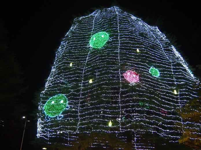 仙台光のページェント シンボルツリー
