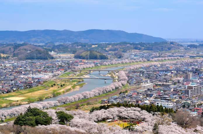 船岡城址公園山頂からみた白石川と桜