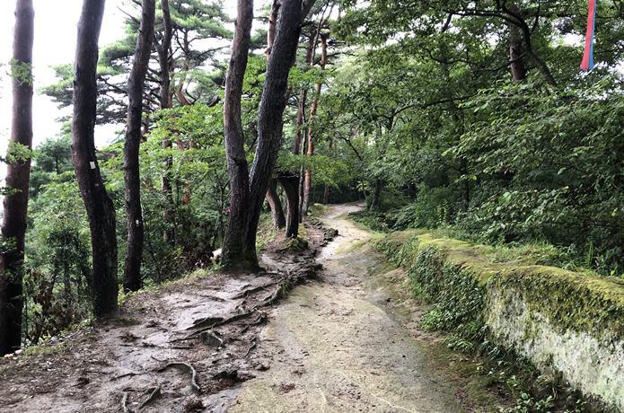 大高森 柵のない登山道