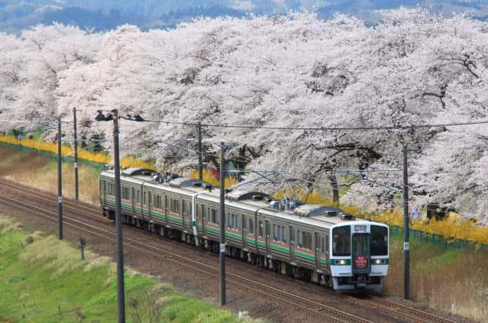 白石川の一目千本桜とJR東北本線