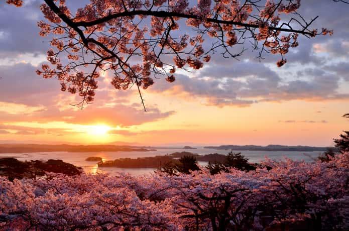 夕日に照らされる松島湾