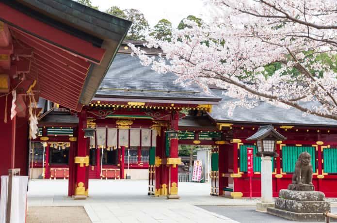 鹽竈神社と桜
