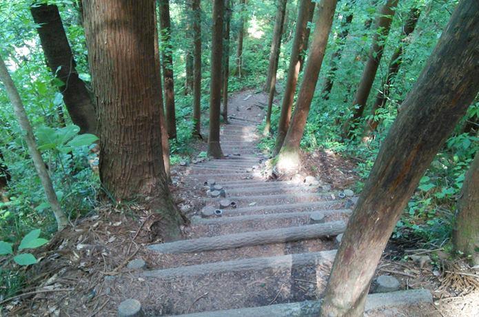 秋保大滝へと続く道