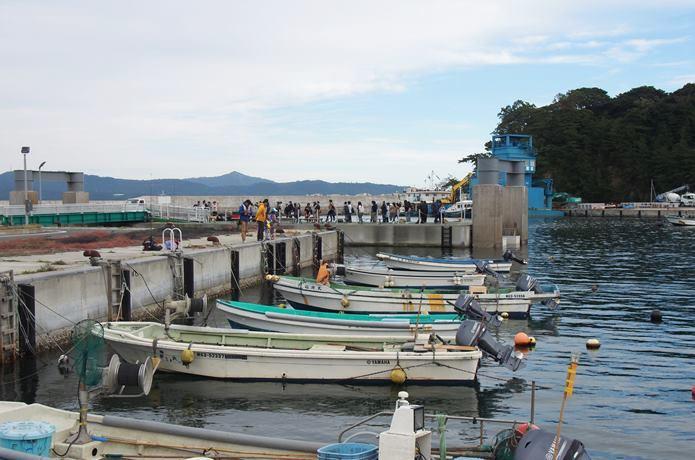 田代島の仁戸田港