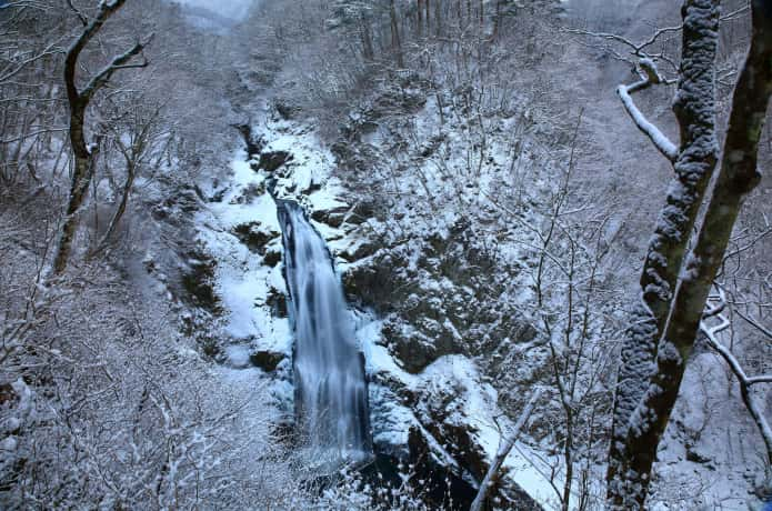 雪化粧した秋保大滝