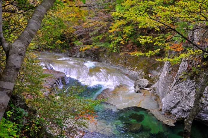 秋保大滝植物園内にある滝