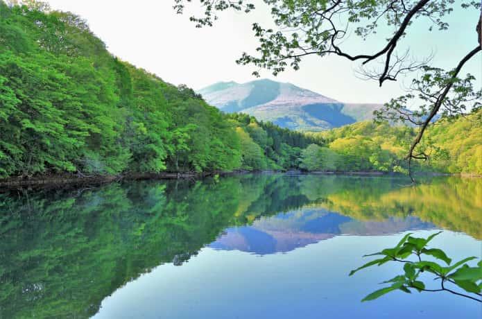 夏 長老湖