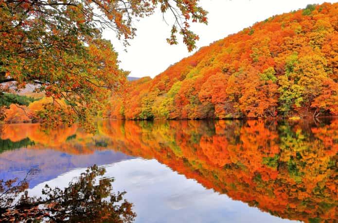 長老湖の水面に写る紅葉