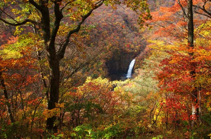 紅葉と蔵王 不動の滝
