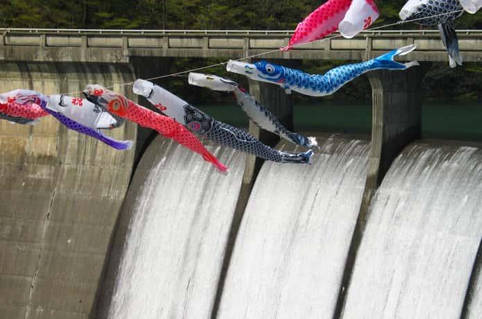鳴子ダム すだれ放流をと鯉のぼり