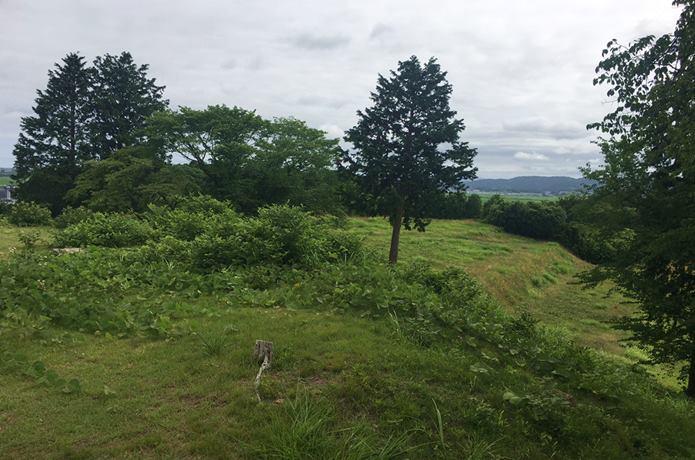 雷神山古墳の風景