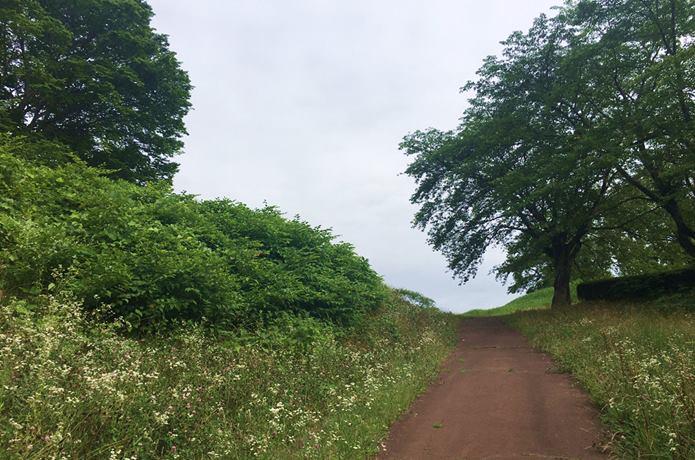 雷神山古墳の散策路