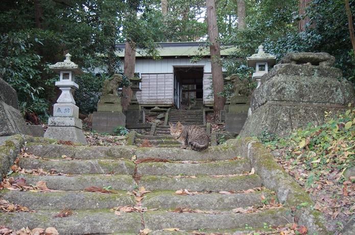 桂島 松崎神社
