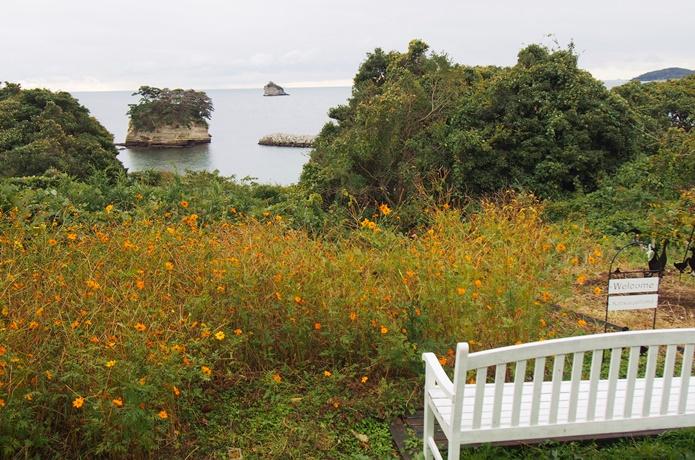 桂島 菜の花畑
