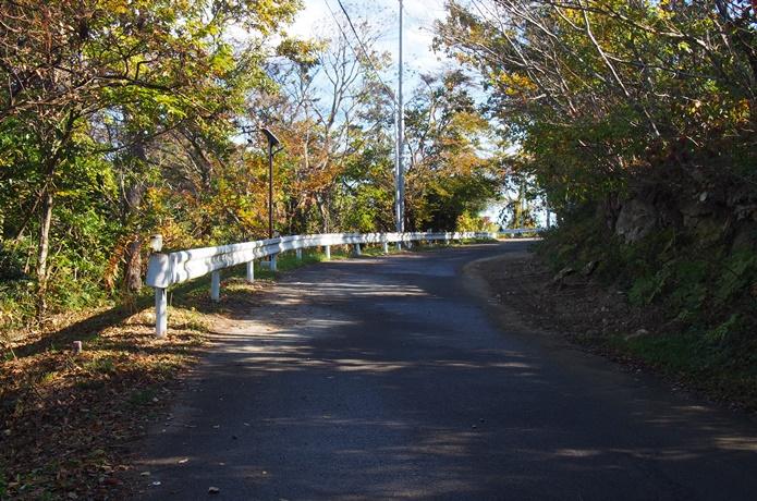 野々島道路