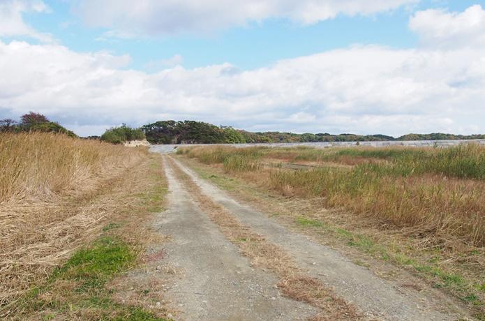 田園地帯 分かれ道