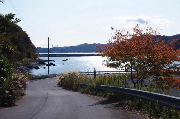 女川町 波止場への道