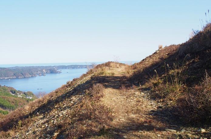 コバルトライン脇道